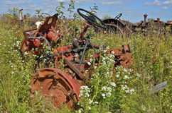 Orange junked tractor lost in a sea of wild flowers and plants Stock Photos