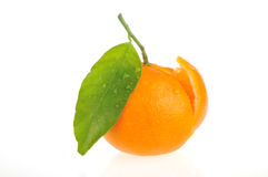 Orange juteuse coupée en tranches Images stock