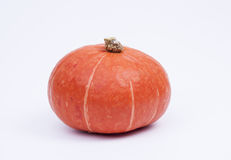 Orange Kürbis Lizenzfreie Stockfotos