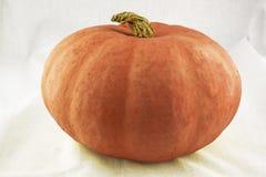 Orange Kürbis Lizenzfreie Stockbilder