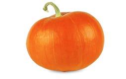 Orange Kürbis mit grünem Stamm auf einem weißen Hintergrund Lizenzfreies Stockfoto