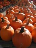 Orange Kürbise auf den hölzernen Paletten gestapelt für das Versenden lizenzfreies stockfoto