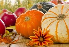 Orange Kürbise mit Äpfeln im Herbst stockbild