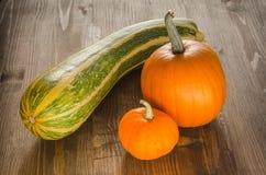Orange Kürbise und eine große gestreifte Zucchini Stockbilder