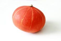 Orange Kürbisnahaufnahme lizenzfreies stockbild