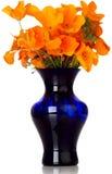 Orange Kalifornien-Mohnblume im blauen Vase Lizenzfreie Stockfotos