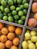 Orange, Kalk, Früchte Lizenzfreies Stockbild