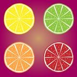 Orange, Kalk, Limon, Grenadinen-Vitamin-Vektor Lizenzfreies Stockfoto