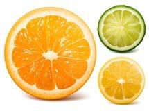 Orange, Kalk und Zitrone. stock abbildung