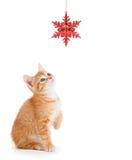 Orange kattunge som leker med en julprydnad Royaltyfria Bilder
