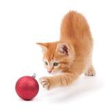 Orange kattunge som leker med en julprydnad Arkivfoto