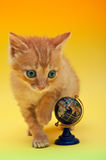 Orange kitten with a globe Stock Photography
