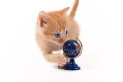Orange kitten with a globe Stock Image
