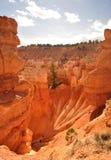 Orange Klippe und Unglücksboten in Bryce Canyon Lizenzfreie Stockfotos