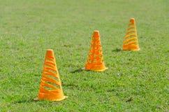 Orange kottemarkörer på det gröna gräset Arkivbilder
