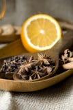orange kryddor Royaltyfri Bild