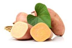 Orange Kumara Sweet Potato Stock Photography