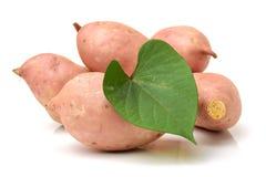Orange Kumara Sweet Potato Stock Photo