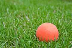 Orange lacrosse ball on grass Stock Photography
