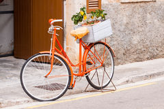 Orange ladies bicycle with flowers decoration Stock Photos