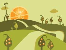 Orange Land Stockfotos