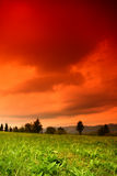 Orange landscape. Landscape with orange sky and green grass Royalty Free Stock Photography
