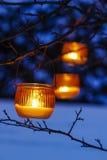 Orange lantern hanging on a branch Royalty Free Stock Photography