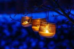 Orange lantern hanging on a branch Stock Photo