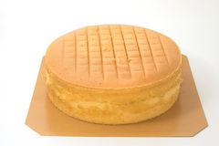 Orange layer cake just out of the oven Royalty Free Stock Photo
