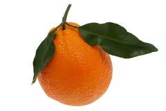 Orange with leaf Stock Photos