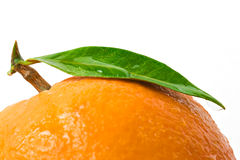 Orange with leaf Stock Photos