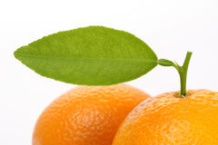 An Orange with leaf Royalty Free Stock Photography