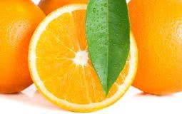 Orange and leaf Royalty Free Stock Image