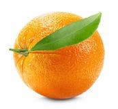 Orange with leaf isolated on the white background.  Royalty Free Stock Image