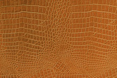 Orange Leather Stock Images