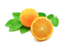 Orange with leaves. Orange fruit with leaves on white background stock images