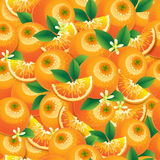 Orange with leaves and flowers seamless pattern Royalty Free Stock Images