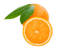 Orange with leaves full and a half before Stock Image