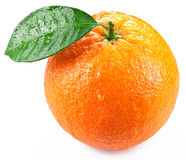 Orange with leaves isolated on a white background. royalty free stock photos