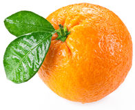 Orange with leaves isolated on a white background. stock images