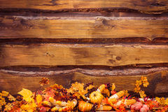 Orange leaves, pumpkins, corns, mushrooms, peppers, garlic at th Stock Images