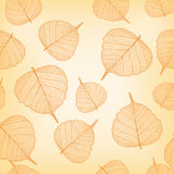 Orange leaves, seamless Royalty Free Stock Photos