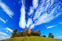 Orange leaves trees with dark blue sky with white clods. Morning view after sunrise, autumn view, orange landscape, Rynartice, Boh Royalty Free Stock Photo