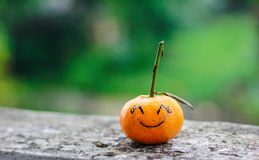Orange leende Arkivfoton