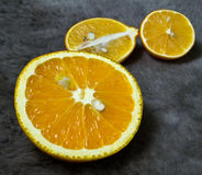 Orange and lemon  on a black background Royalty Free Stock Photography
