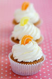 Orange and lemon cupcakes Stock Image