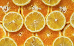 Orange and lemon cut into circles2 stock photos