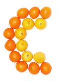 Orange and lemon fruits Stock Images