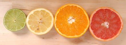 Orange, lemon and grapefruit Stock Image