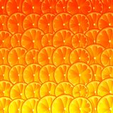 Orange lemon grapefruit art background. Vector Illustration royalty free illustration